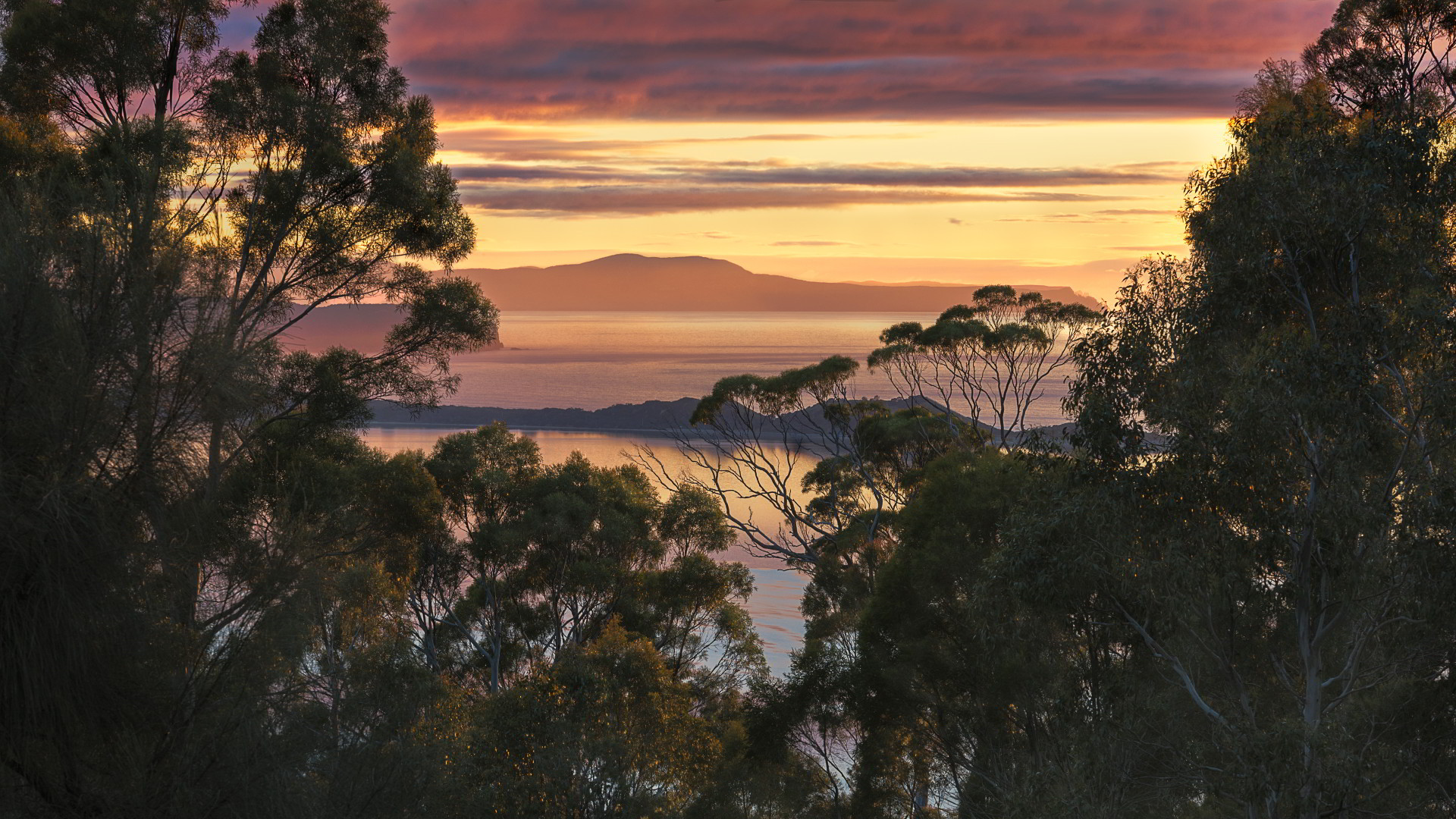Pastel skies over Bruny Island Neck