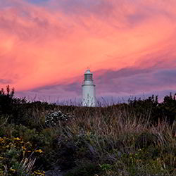 Bruny Island Lighthouse at dusk - guest contribution by Shona Van Lieshout